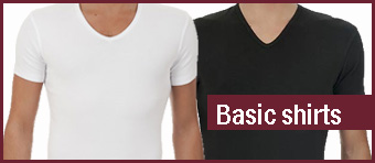 basic heren shirts biologisch katoen bio