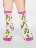 sokken cactussen