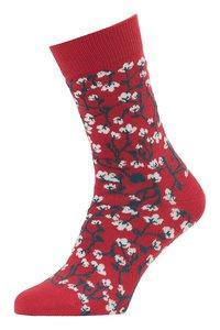 bio katoenen rode sokken