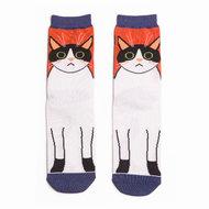 katten sokken oranje